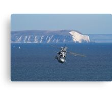 Merlin coastline Canvas Print