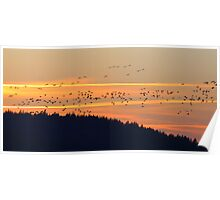 Waterfowl Sunset - Boscawen, NH 03-18-12 Poster