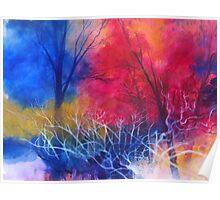 Colori nel bosco Poster