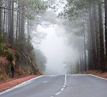 Into the mist by ruthgard