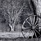 Wagon Wheel - Black and White by Debbie  Roberts