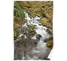 Waterfall leading into the Hoh River  Poster