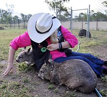 Wombats At Play by Barbara  Jean