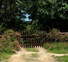 Wooden Gate And Flowers by Noel Elliot