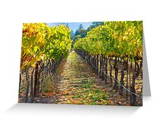 Vineyard Light Greeting Card