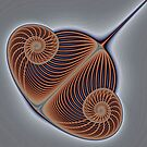 Wire Bow Spiral by Mark Eggleston