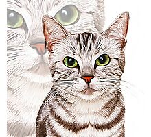 Kitty, Kitty Photographic Print