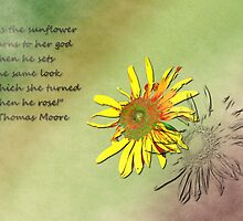 Sunflower with quote by RaineyDay