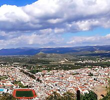 panorama of Nafplio- Greece 2 by tbshots