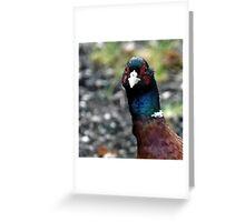 Mr. Pheasant. Greeting Card