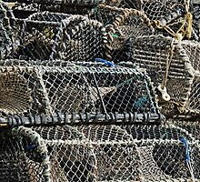 Fish Trap Abstract by Alexandra Lavizzari