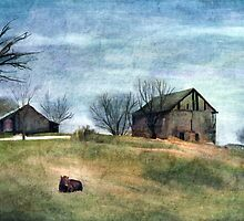 The Old Barn  by Terry  Pellmar