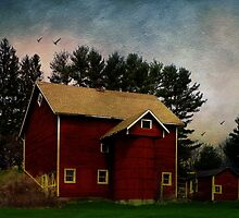 Happiness is an Old Barn by PineSinger