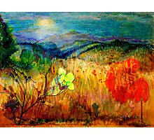 At the Edge of Dreaming Fields Photographic Print