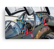 Fighter jet. Canvas Print