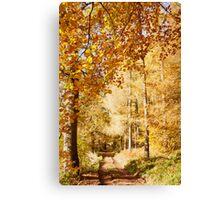 Autumn colors, riverside walk, November 2103  Canvas Print
