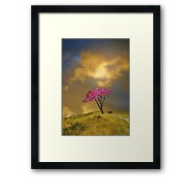 The Tree on the Hill Framed Print