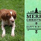 Christmas Card 20 by Australian Brittanys