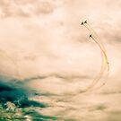 flight by Alexandr Grichenko