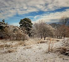 First Snowfall of the Season by KatMagic Photography