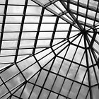 Glass Ceiling by DearMsWildOne