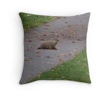 Silly Ol Groundhog Throw Pillow