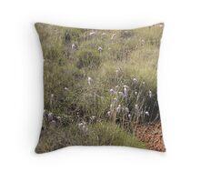 Native Grasses      Karijini N.P. Throw Pillow