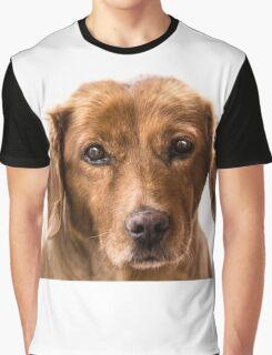 puppy eyes Graphic T-Shirt