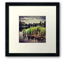 Ripple Greenery Framed Print