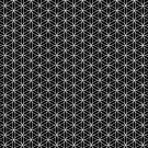 Flower of Life - Black by Steven Nicolaides