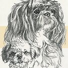 ShihPoo Father & Son by BarbBarcikKeith