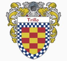 Trillo Coat of Arms/Family Crest by William Martin