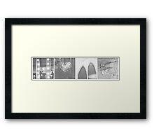 41/365 Framed Print