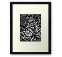 Geologic Acne Framed Print