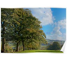 wooded field Poster