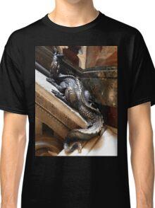 hiding staircase dragon Classic T-Shirt