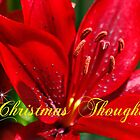 Christmas Thoughts by AnnDixon