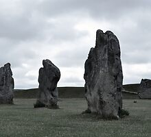 Avebury Grey ~ Wiltshire 2010 by Samantha Creary