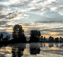 Pitt Meadows Sunrise by Darren Quarin