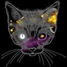 Galactic Kitten by pda1986