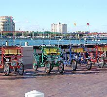 St. Petersburg Pier Transport by BearheartFoto