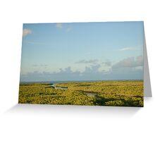Florida Swamp Greeting Card