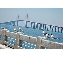 St. Petersburg Bridge Photographic Print