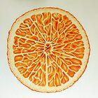 Orange by Michelle Pullen