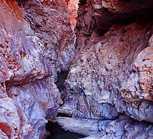 Redbank Gorge, NT by Nick Delany