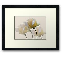 Pale Yellow Framed Print