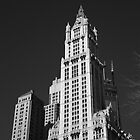 Woolworth Building by Frank Romeo
