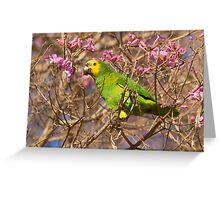 Blue-fronted Parrot, Brazil Greeting Card