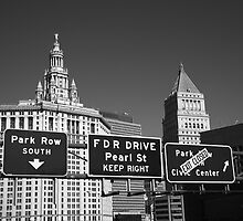 New York City with Traffic Signs by Frank Romeo