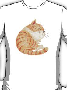 Tabby sleeping T-Shirt